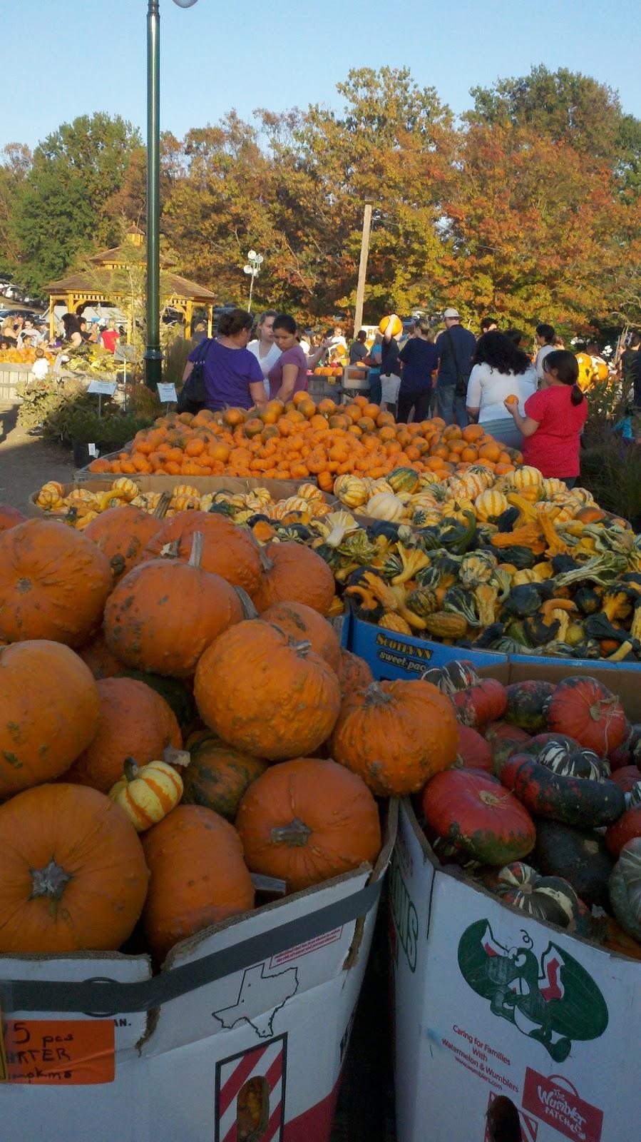 The Garden Plot: October 2012