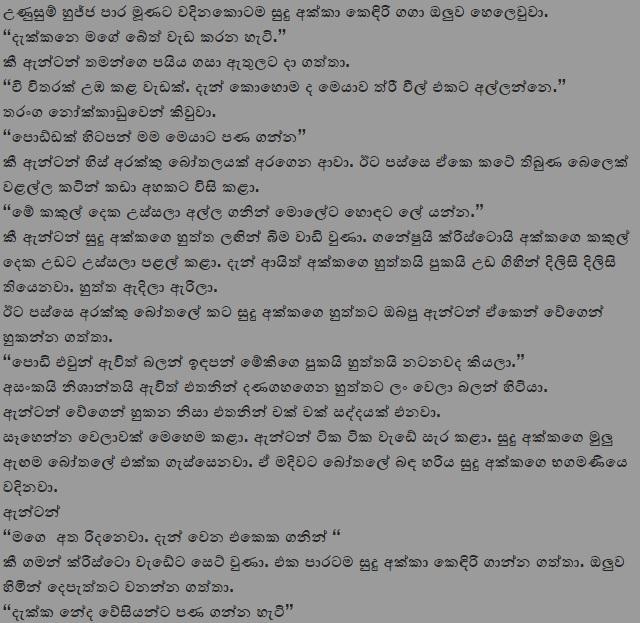 Sri Lankan Couple Sex Hidden Camera  - Sinhala Wal Katha
