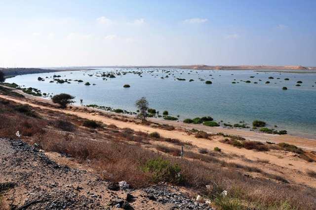 Shore Lines in Um Al Quwain, UAE