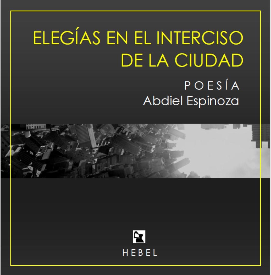 Elegías en el interciso de la ciudad, Hebel Ediciones, 2015