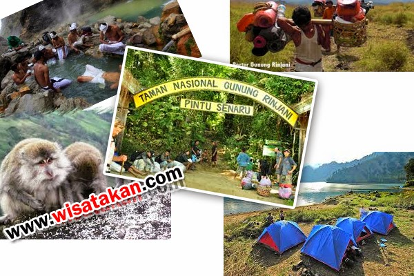 Tempat Wisata di Lombok Gunung Rinjani Lombok