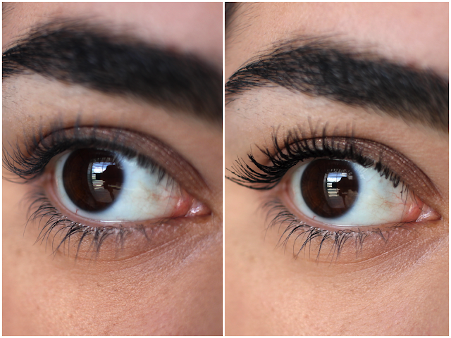 Maybelline The Falsies Push Up Drama Mascara Review