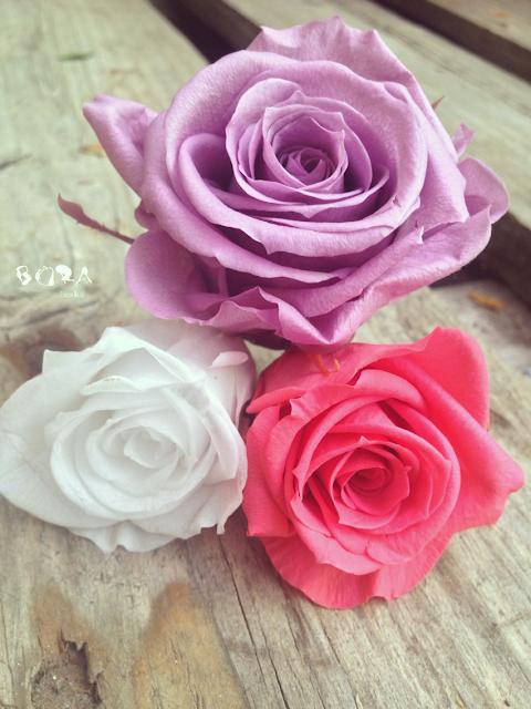 colores rosa eterna