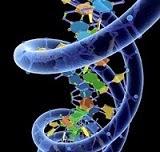 ¿Qué es la genética?