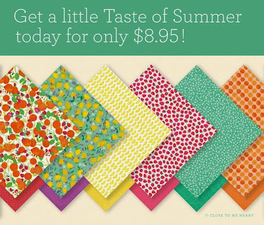 Taste of Summer Paper Packet
