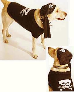 flower garden dog coat crochet odds ends dog coat crochet