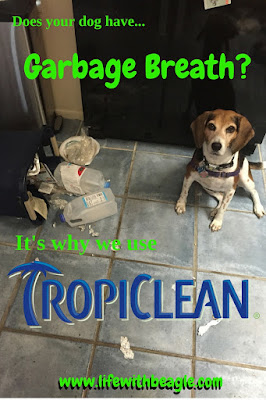 Doggy bad breath is gross. Tropiclean keeps breath fresh