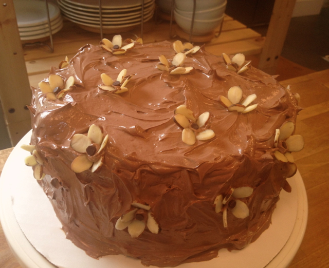 Heidi's Mix: Chocolate Almond Cake