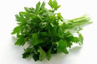 salsa-salsinha-beneficios-saude