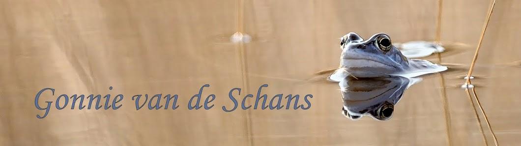 Gonnie van de Schans