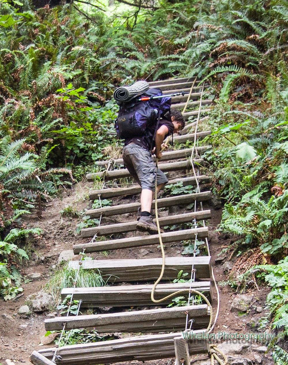 Walks With Moss Ultralight Adventure Equipment Ula