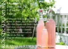 Rabarber - recept