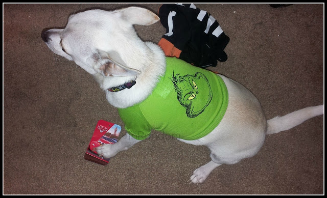Cute Grinch Shirt for Dogs