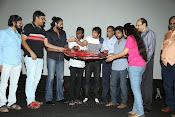 Raja Rani Movie Audio Release Photos-thumbnail-8