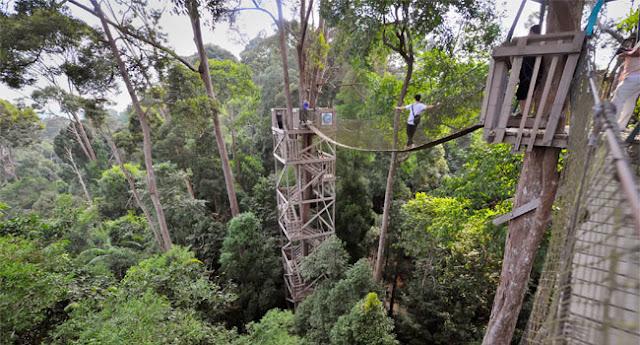 [Image: bermain-jembatan-canopy-bridge-bukit-ban...-timur.jpg]