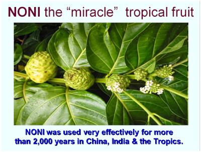 how to use noni leaves for joint pain
