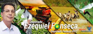 DEP.  FEDERAL EZEQUIEL FONSECA do PP de MT