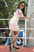 Pooja Jhaveri latest glam pics-thumbnail-14