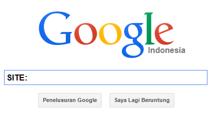 Cara Mengetahui Artikel Blog Yang Sudah Terindex Google
