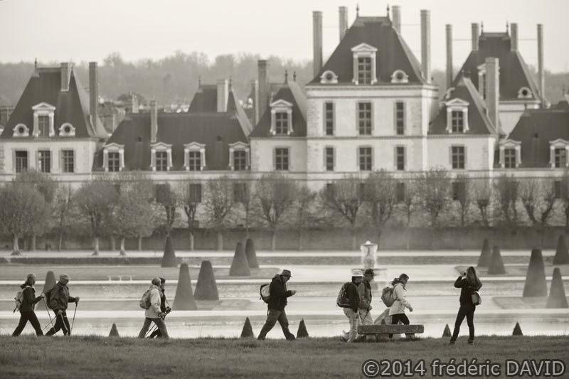 sport marche randonnée 3 châteaux Fontainebleau tourisme Seine-et-Marne