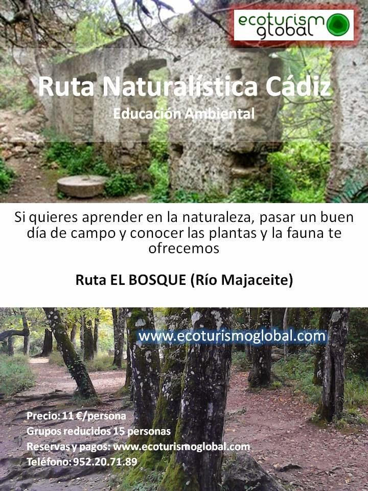 http://ecoturismoglobal.com/rutas_ecoturismo/rutas-turismo-ecologico-cadiz?product_id=59