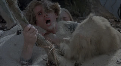 princess bride fire swamp internet troll forum
