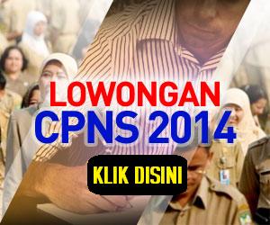 Lowongan CPNS 2014