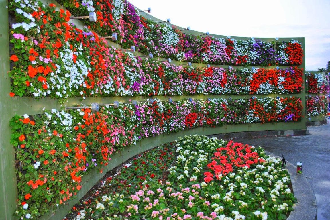 il giardino delle naiadi: soluzioni architettoniche: verde ... - Piante Per Giardini Verticali