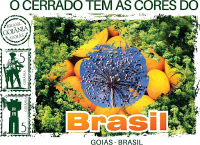 AS CORES DO BRASIL