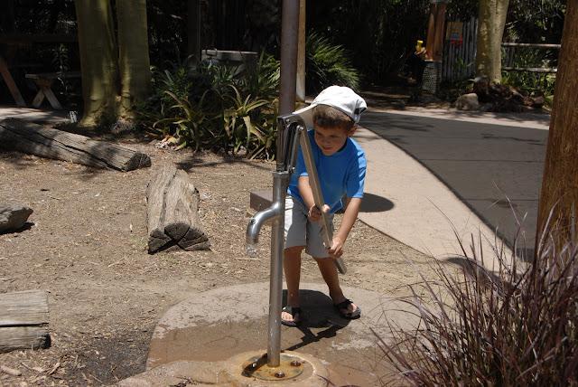 water pump at the safari park
