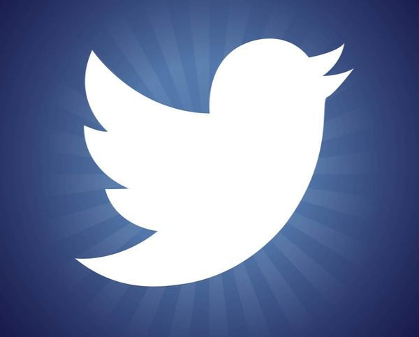 Free New Twitter Bird Logo Graphics