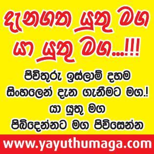 www.yayuthumaga.com