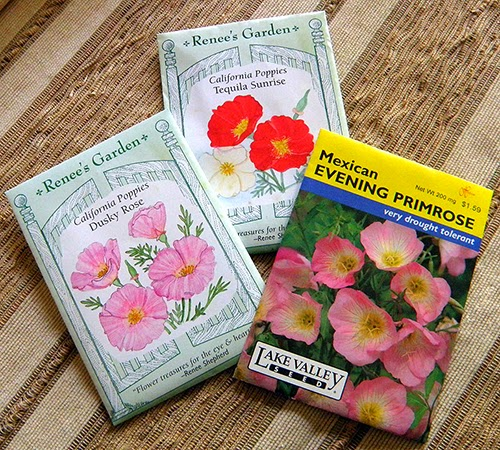 Three seed packets: Mexican Evening Primrose and Two California Poppy Cultivars