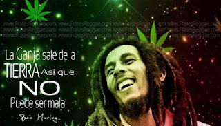 Palabras de Bob Marley y su opinion de la marihuana