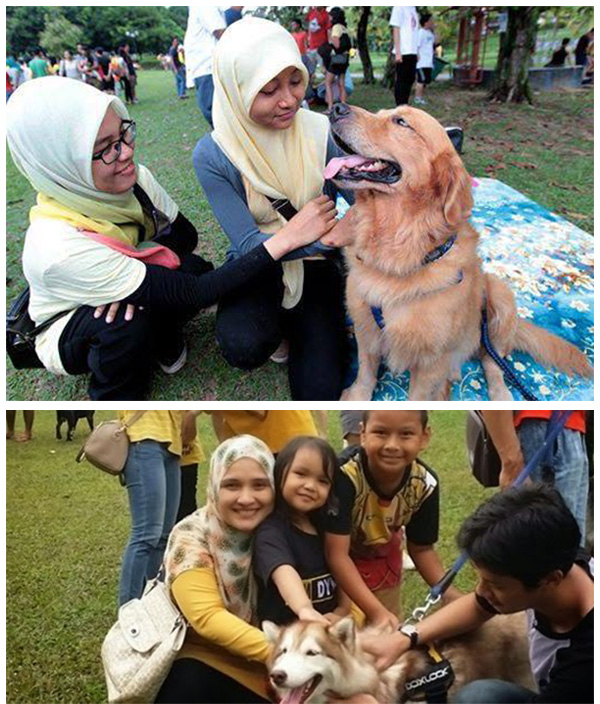 WTF KOT Program I Want to Touch a Dog Undang Pelbagai Reaksi