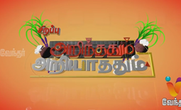Arinthum Ariyathathum 15th January 2015 Vendhar Tv  Pongal Special 15-01-2015 Full Program Shows Vendhar Tv Youtube Dailymotion HD Watch Online Free Download,