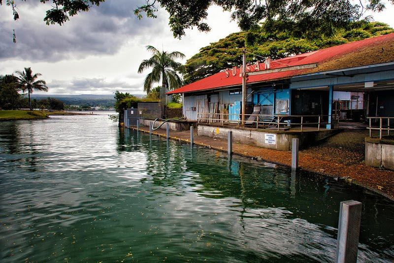 suisan fish market wailoa river hilo hawaiian time machine ForSuisan Fish Market