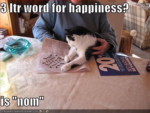 funny-pictures-cat-has-found-a-three-letter-word-for-happiness.jpg