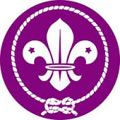 Symbol Of BoyScout In World