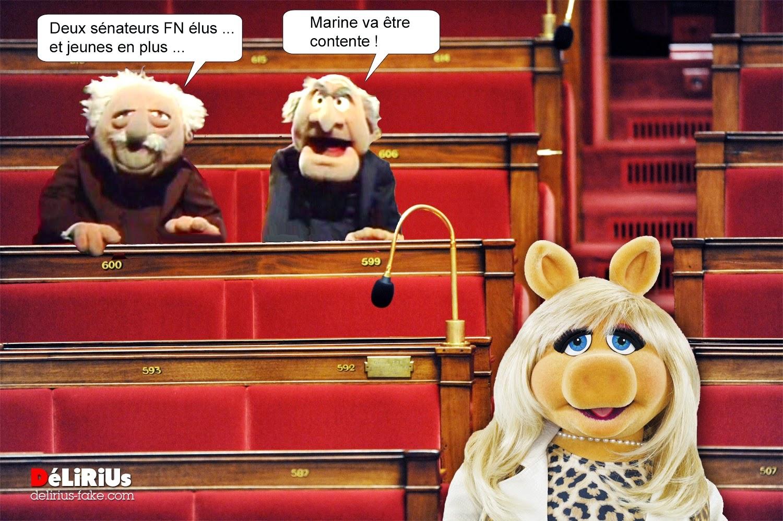 Senateurs élus