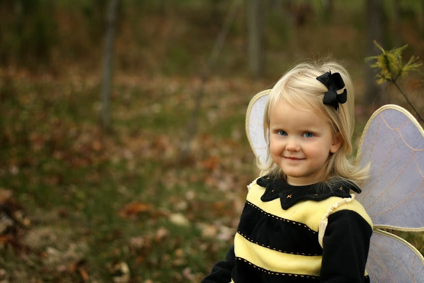 Pottery Barn Bumble Bee Costume