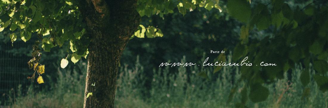 lucia rubio { blog personal }