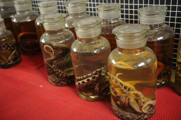 BEBERAPA balang yang mengandungi wain ular dijual di Kampung Zisiqiao pada Jumaat lalu.