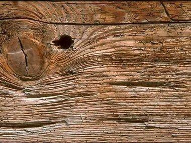 Como prevenir y detectar la carcoma a tiempo el ba l del for Carcoma de la madera