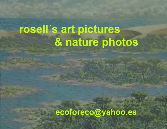 Rosell´s art pictures & nature photos.