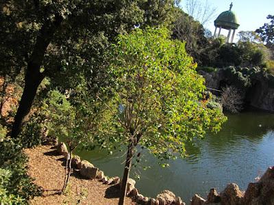 Templete sobre el lago en el Parque de Torreblanca