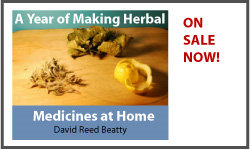 A Year of Making Herbal Medicines