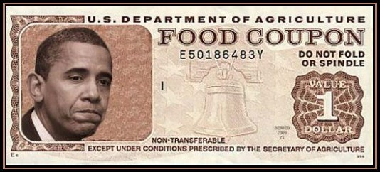 how to get food stamps in florida