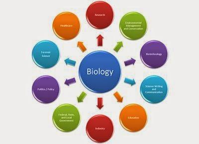 Gambar Cabang Ilmu Biologi