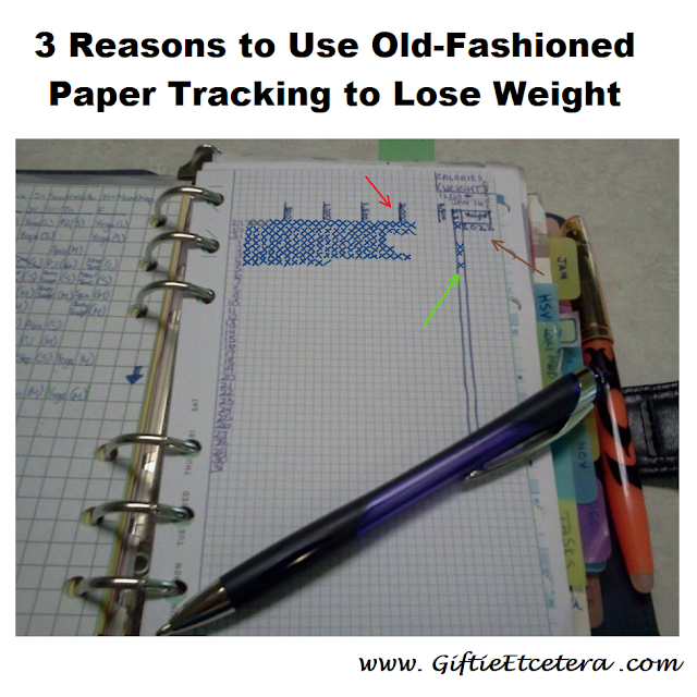 food log, weight loss, losing weight, food logs